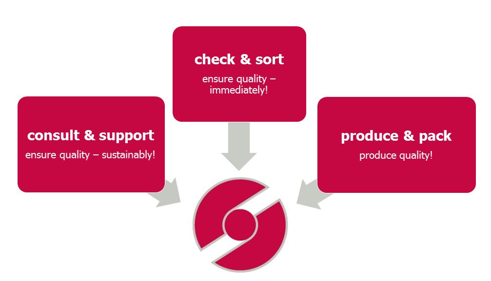 Dienstleistungen (consulting, produce, Nacharbeit)